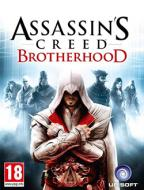 Компьютерная игра  «Assassin's Creed: Brotherhood»